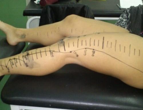 Sistema nervoso e meridianos de acupuntura: 3 factos importantes