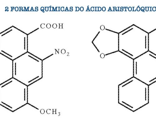 Nefropatia por Ácido Aristolóquico